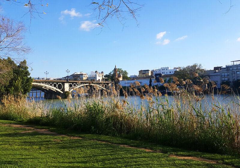 Chilling at the Guadalquivir river in Sevilla