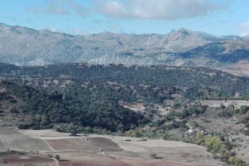 What to do in Ronda in one day - 12 attractions and places to see in ronda