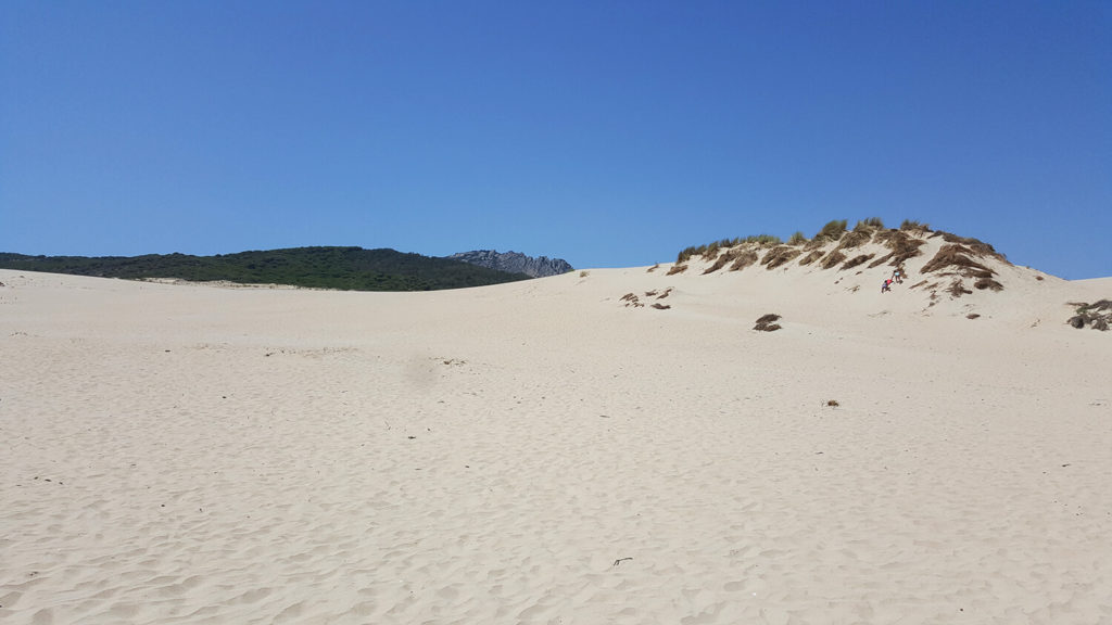 Sand dunes between Punta Paloma and Valdevaqueros in Tarifa