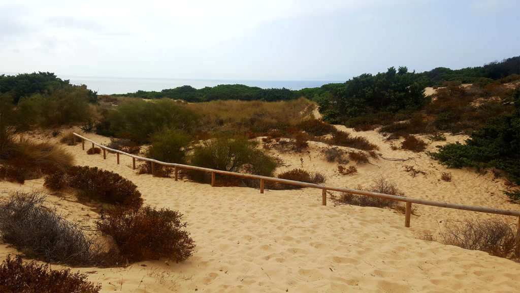 how to get to Punta paloma - walking through sand dunes