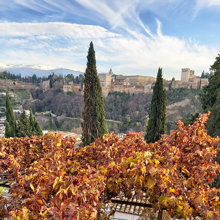 Amazing view to Granada in December - Alhambra & Sierra Nevada