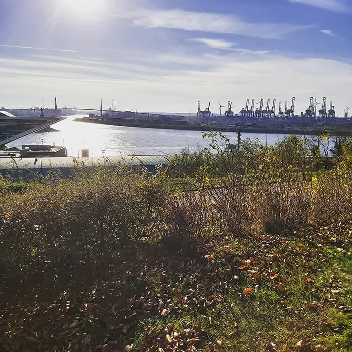 View from Altonaer Balkon Hamburg
