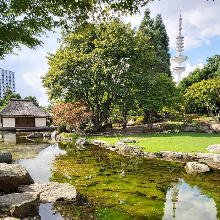 Japanese Garden Planten un Blumen